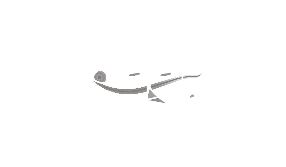 Teatro Casa Arte